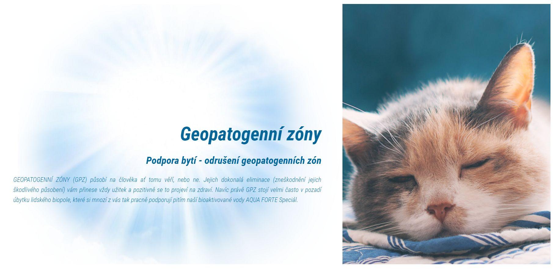 odrušení geopatogenních zón